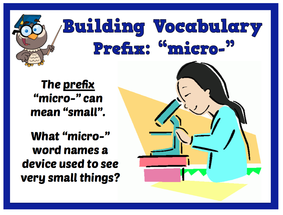 Micro bellows spring fourth grade for Terr root meaning